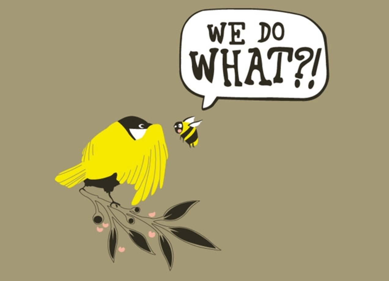 Bird and the bee sex